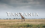 Luxurious safari vacation